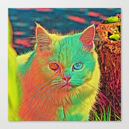 AnimalColor Cat 017 Canvas Print