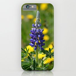 Stand-Alone iPhone Case