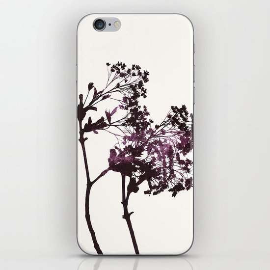 sugar maple 1 iPhone & iPod Skin