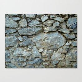 wall 2 Canvas Print