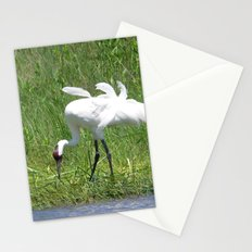 Whooping Crane Stationery Cards