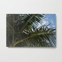 A Lushs Asymmetrical Palm Leaf Metal Print