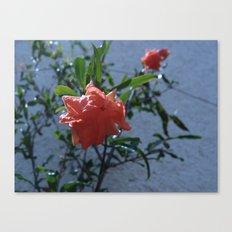 Flowers #3 Canvas Print