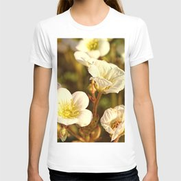 Peaceful T-shirt