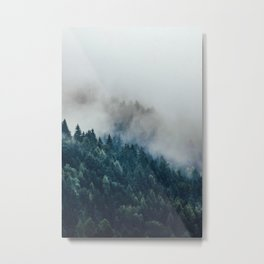 The Foggy Forest (Color) Metal Print