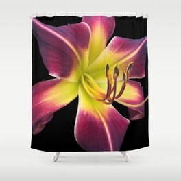 Purple Lily Shower Curtain