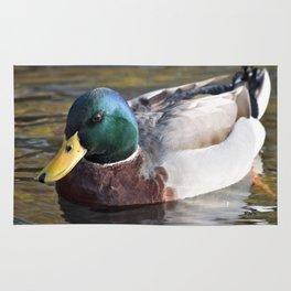 Duck Rug