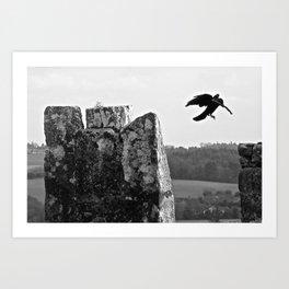 nesting on blarney Art Print