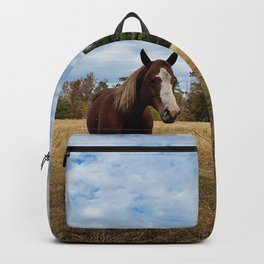 Two Horse Amigos in Pasture Backpack