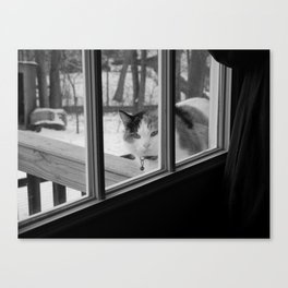 I'd like to come in now... Canvas Print