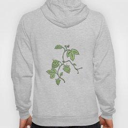 Hop Plant Climbing Drawing Hoody