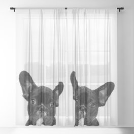 Black and White French Bulldog Sheer Curtain