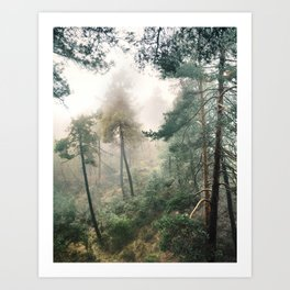 """Into the woods"". Wandering into the fog Art Print"
