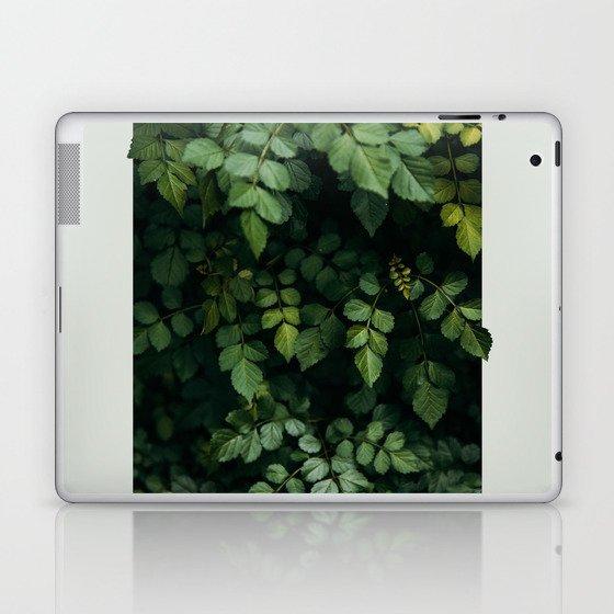 Growth Laptop & iPad Skin