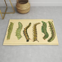 Naturalist Caterpillars Rug