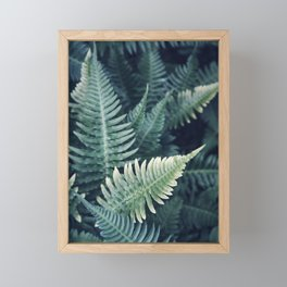 Teal Fern Framed Mini Art Print