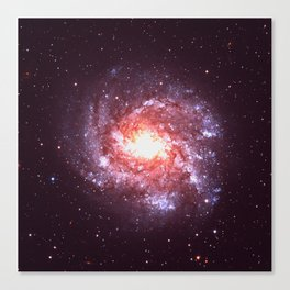 Star Attraction Canvas Print
