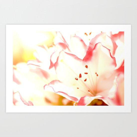 Dreamy Flowers  Art Print