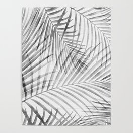 Black and White Tropical Palms Poster
