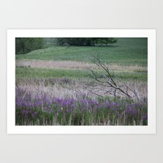 South Dakota Prairie Art Print