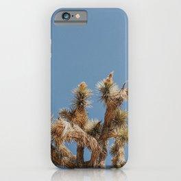 Joshua Tree LI / California Desert iPhone Case