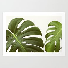 Verdure #6 Art Print
