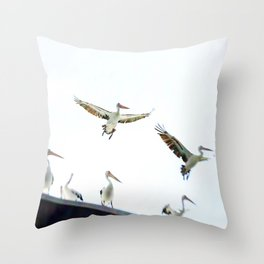 Pelicans of Woy Woy Throw Pillow