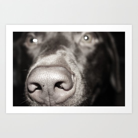 Dog Nose Art Print