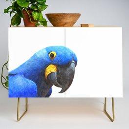 Blue Parrot Portrait Credenza