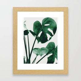 Monstera Vibes #1 #minimal #green #decor #art #society6 Framed Art Print