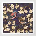 Chaffinches in Cherry Blossom by lottibrown