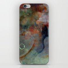 vernal iPhone & iPod Skin