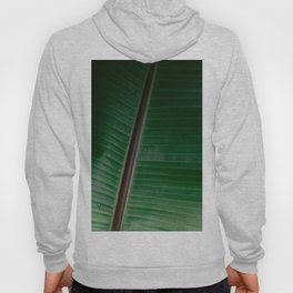 Botanical plant leaf with raindrops | Nature photography | Colourful minimalist gradient pattern Hoody