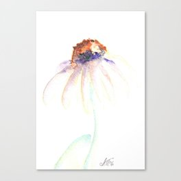 Daisy. Echinacea. watercolor Canvas Print