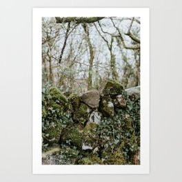 When Abounding Hedges Ring Art Print