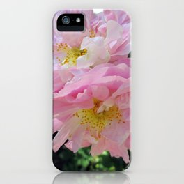 Celestial Antique Rose iPhone Case