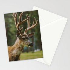 Joseph Stationery Cards