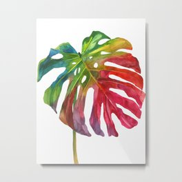 Leaf vol 2 Metal Print