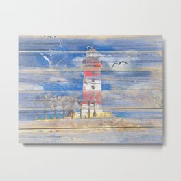 Lighthouse with Seagulls A343 Metal Print