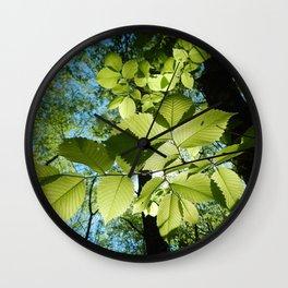 Sunlight Canopy V Wall Clock