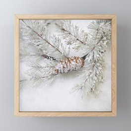 pine cone Framed Mini Art Print