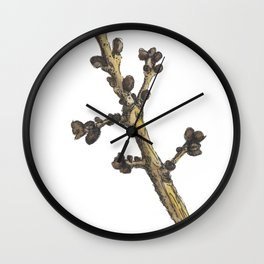 sprig Wall Clock