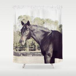 Beautiful in Blac 2 Shower Curtain