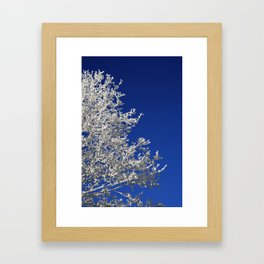 Frosty Framed Art Print