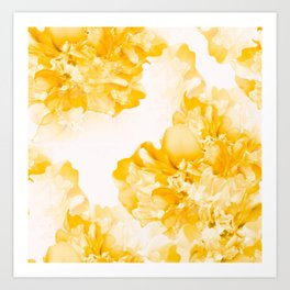 Beautiful Peony Flowers White Background #decor #society6 #buyart Art Print