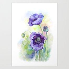 Watercolor blue poppy flowers Art Print