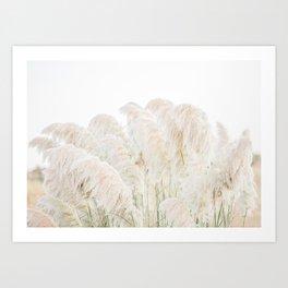 Natural Pampas Grass Art Print