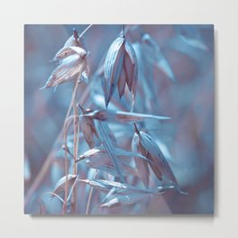 BLUE OAT Metal Print
