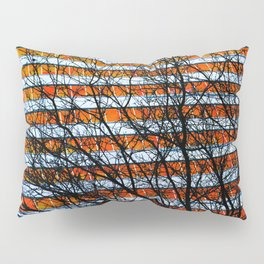 Stripe Resistance Pillow Sham