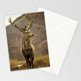 Red Deer Stag in Autumn Stationery Cards